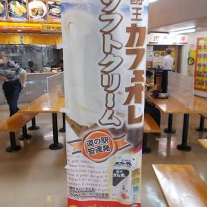 名産・名物食べ歩き(酪王ソフトクリーム・福島県二本松市)