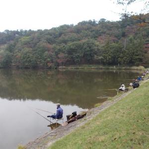 湖沼釣り日記(令和2年10月①・大槻公園釣行)