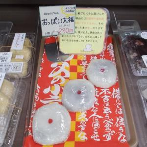名産・名物食べ歩き(おっぱい大福・福島県いわき市)