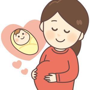 妊娠中期に買ったものリスト~妊婦帯と骨盤ベルト