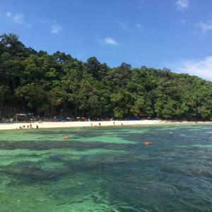ランカウイ島から行く、パヤ島でのシュノーケリングツアー体験談!