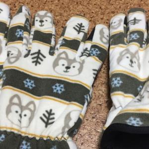 インスタで見た手袋