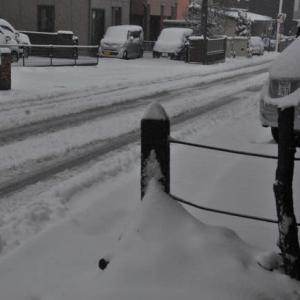 なごり雪にしては豪華すぎ
