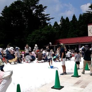 六甲山カンツリーハウス真夏の雪まつりに行ってきた!服装や持ち物などを解説