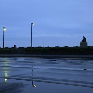5月25日の朝の啄木小公園