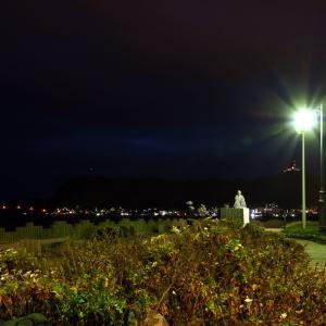 11月29日の朝の啄木小公園