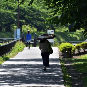 チャリンコぎこぎこ昼から散歩 五稜郭公園 野外劇