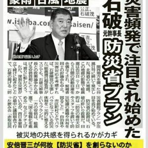 安倍晋三政権は台風19号で一挙に防災省を創設するだろな。【防災省とはFEMAの変名なのだ。】