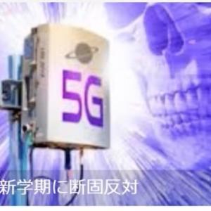 ついに、スマートメーターが電波を発射し出した。【千葉県柏市です。】2020/11/24