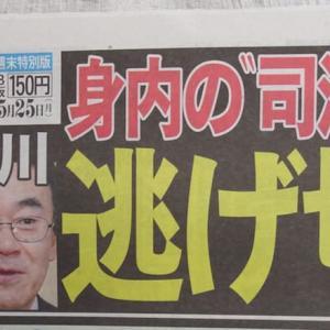 あべちゃんは円満退社。らしい。【国民は地獄を見る。5Gとスーパーシティを批判しない。がきんちょが総理になること。】