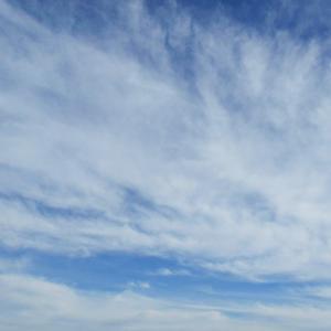 龍雲祭りと宇宙人さんと耳が翼の犬と剣(19.5.8.水)