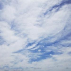 美しい蛇雲さんと楽し気な龍雲さんたち(19.5.21.火)