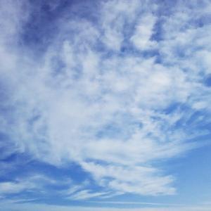 結跏趺坐する仏様たちと鳳凰の雲(19.5.21.火)