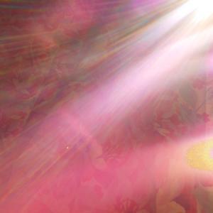 風の様に光るレンズフレア(19.5.30.木)