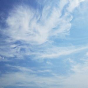 波の上で舞う鳳凰のような雲と太陽曼荼羅と仏様(19.6.1.土)