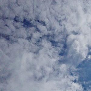 祈る人。ゾウやライオンのような天界さん。(19.9.2.月)