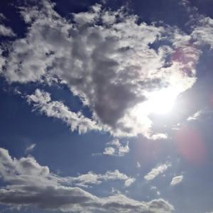 涙する女性。ニワトリと犬と羊。沢山の天界さんと異次元さんと天界の鬼たち。(19.11.19.火)