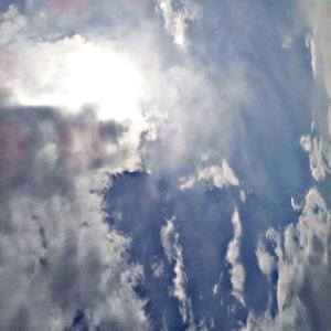 のっそりと陰たちが現れる。小さな天界さん。(20.2.10.月)