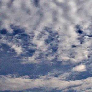 帽子をかぶった猫と鳥。ひび割れた化石雲と沢山の異次元さんたち。(20.2.15.土)