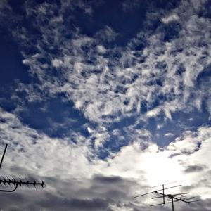 「135」モフモフの魔界さんと天界さん。陰陽は分かれず背中合わせ。ヘリコプター。(20.11.23.月)