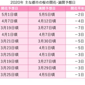 もう桜開花予想!! このまま暖冬が続いて   東京と高知では3月19日 …7年連続で早すぎる。 (まとめブログ)