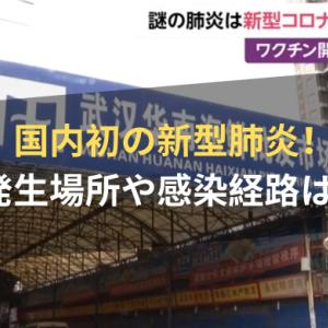 春節祭を前に不安…  日本で陽性反応確認     ★中国の「新型肺炎」に不安の声続出!(まとめブログ)