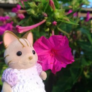 お花バニア