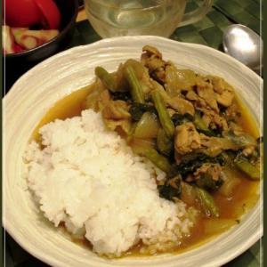 緑の野菜と豚肉のカレーと赤いピクルス