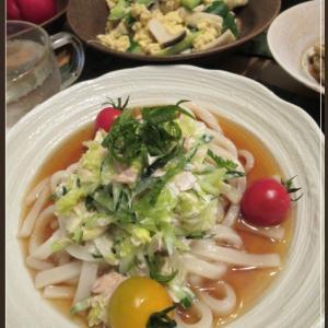 ツナサラダうどんときゅうりと卵の炒め物