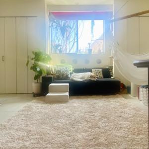 狭小住宅は狭くない⁈ 狭小住宅に住む