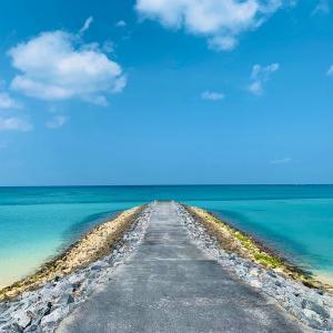 【沖縄 国頭村①】隠れた絶景がたくさん! 海と森を贅沢に楽しむ