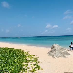 【波照間島 沖縄】 ニシ浜が東洋一の美しさ! @3月