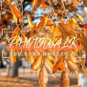 【SIGMAfp(シグマエフピー) 京都散歩】ティールアンドオレンジでスナップ!紅葉風の写真も撮れました。