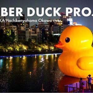 【ラバーダック 2020@大阪・八軒屋浜 / SIGMA fp】大阪に帰ってきたラバーダック!かわいい癒しのアートです。