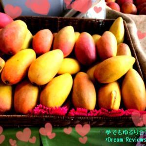 週末は台北希望広場へ!旬のフレッシュマンゴー丸かじり。