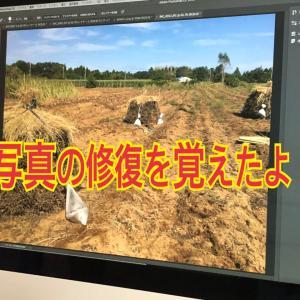 アドビオンライントレーニング通信講座日記9フォトショ 写真の修復をマスターしたよ!