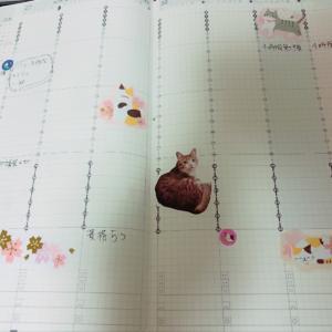 ジブン手帳に書いた来週の予定と目標・癒しのシール
