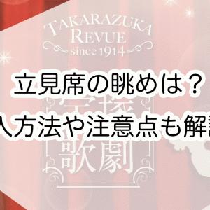 宝塚歌劇の立見席の見やすさは?購入方法や持ち物・注意点・当日券の待ち時間を解説!