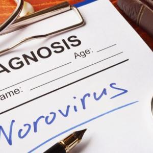ノロウイルスの流行時期っていつなの?