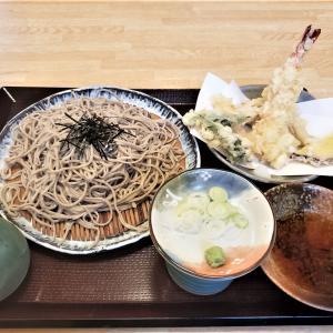 小諸市「郷ごころ」さんで日本蕎麦ランチ。美味しくてリーズナブル。感染症対策もばっちりです。