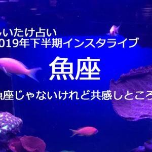 しいたけ占い2019年下半期【魚座】のインスタライブ 魚座じゃないけれど共感!