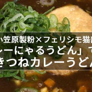 小笠原製粉×フェリシモ猫部「カレーにゃるうどん」で作るきつねカレーうどん