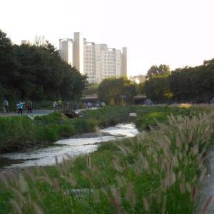 ソウルの遊歩道(1)
