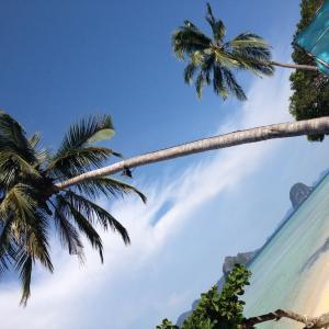 年末年始タイのビーチに行くならここ!透明度とアクティビティを紹介