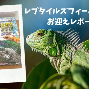 【レポート】レプタイルズフィーバー2019【爬虫類・エキゾチックアニマルイベント】