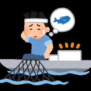 北海道のアザラシの漁業被害が急減していて、衝撃を受けました!