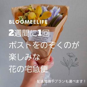 【Bloomee Life】2週間に1回ポストをのぞくのが楽しみな花の宅急便