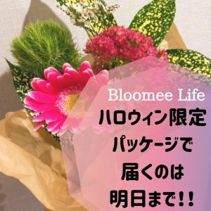 【Bloomee Life】ハロウィン限定パッケージで届くのは明日まで!!