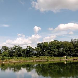県中部の溜め池と空 by  空倶楽部