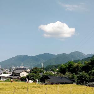 稲刈り風景等々 by 空倶楽部